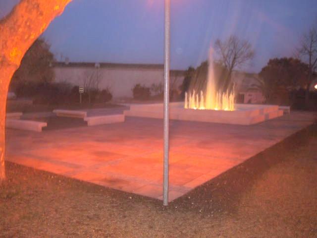 Bassin du jardin de l'Hotel de Ville : Sans titre-9
